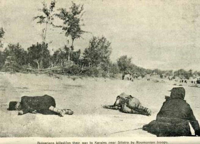 Избити по пътя край село Каралез (Царевец)